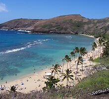 Hanauma Bay, near Honolulu, Hawaii by Richard J. Bartlett