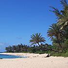 Sunset Beach, O'ahu, Hawaii by Richard J. Bartlett