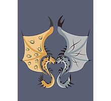 Heaven and Earth - Silver Rathalos x Gold Rathian Photographic Print