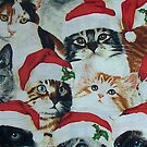 Cats in Christmas Hats by Celeste Yim