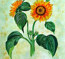 Vintage Sunflowers  by taiche
