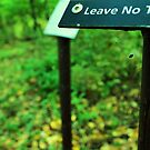 Leave No Trace by Andrea Morris
