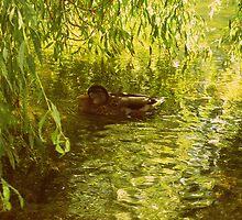 Paddle by SiaskaFrancesca