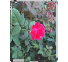 Dew drops and petals iPad Case/Skin