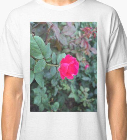 Dew drops and petals Classic T-Shirt