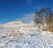 Ranoch Moor by Steve Carter