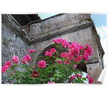 Flowers in Tivoli Gardens Poster