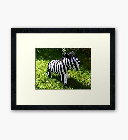 Hand Knitted toy Zebra Framed Print