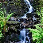 Baby waterfall by TC3 Photography