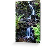 Baby waterfall Greeting Card