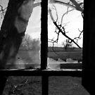 Broken Dreams by Scott Hendricks