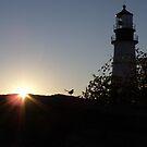 Early bird at Portland Headlight by irmajxxx
