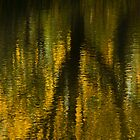 Autumn Water Reflection Abstract I by Valerie Rosen