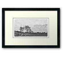 Tree in a Field Framed Print