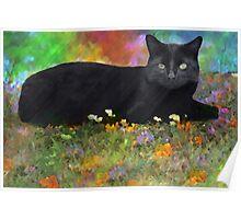 Summer Garden Cat Poster