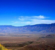 Valley Looking by marilyn diaz