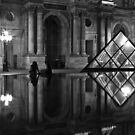 Le Louvre by Julien Tordjman