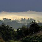 Autumn Mist by Caroline Anderson