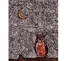 Owl and the Moon Photographic Print