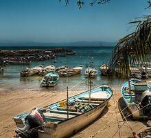 Fishing Boats - Punta Mita. Mexico by Rick Ruppenthal