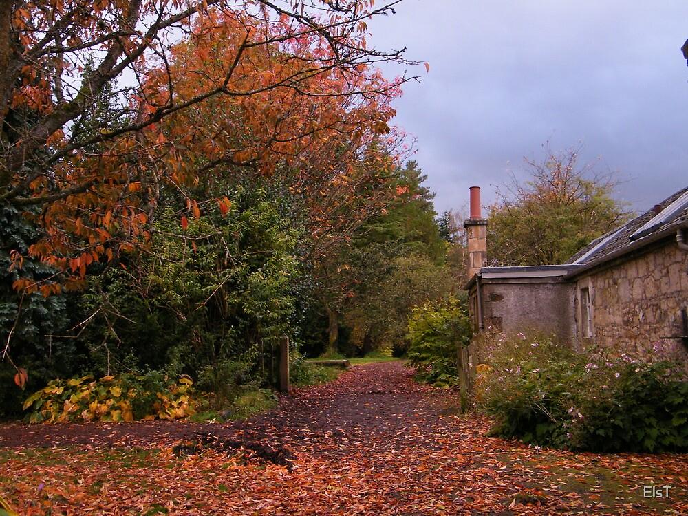 Greenbank Gardens, Garden Walk by ElsT