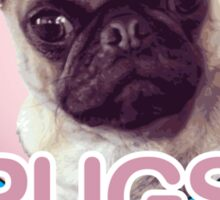 Pugs not Drugs! Sticker