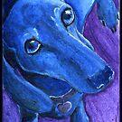 Blue dachshund  by dvampyrelestat