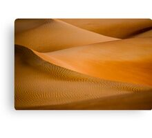 Desert Abstract Canvas Print