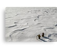 Winter Hike Canvas Print