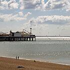 Brighton Pier in East Sussex by Sue Robinson