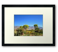 Another Perfect Day Framed Print