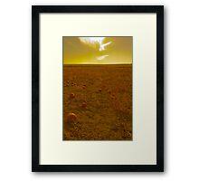 Pumpkin Gold Framed Print