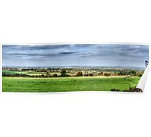 Pinewoods Panorama Poster