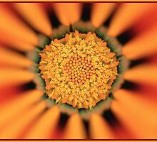 Flower Art Work by pseth