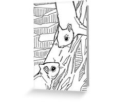 Gray squirrel, coloring book page Greeting Card