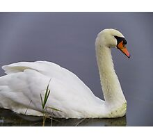 White Calm Photographic Print