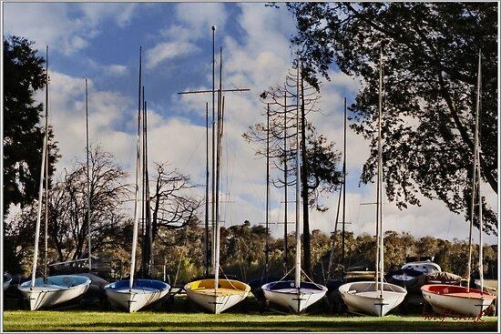 Sailboates by Wolf Sverak
