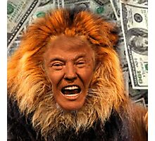 Trump Lion Photographic Print