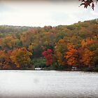 Autumn at Lake Killarney by Susan S. Kline
