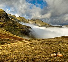 Crinkle Crags & Bow Fell - Cumbria by David Lewins
