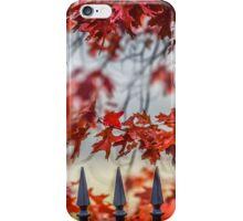 Maple iPhone Case/Skin