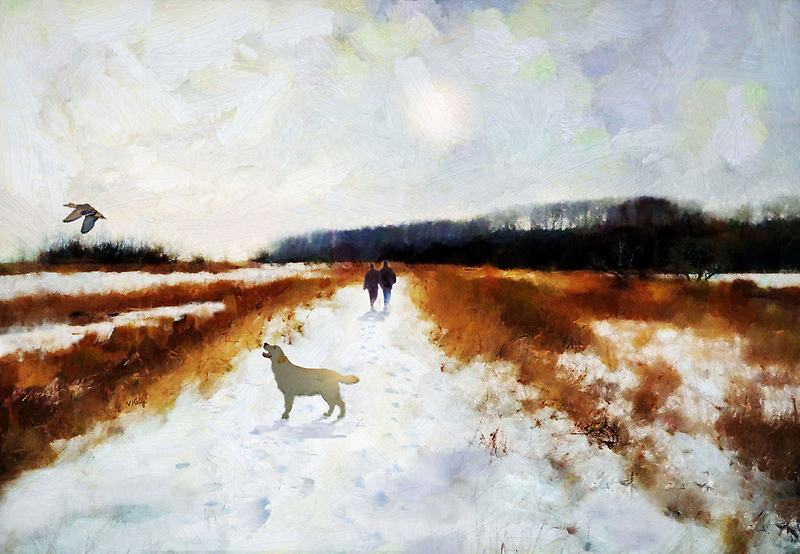 Broadland walk'... by Valerie Anne Kelly