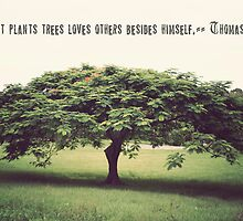 He That Plants Trees Loves Others Beside Himself by Carol Knudsen