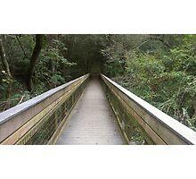 Bridge To ? Photographic Print
