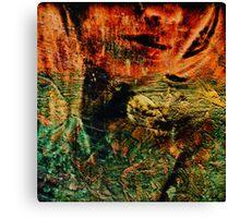 Belle noise Canvas Print