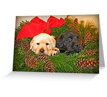 Christmas is rather tiring isn't it! Greeting Card