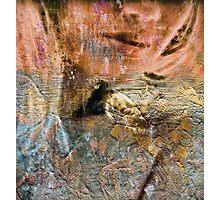 Belle noise 2 Photographic Print