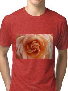 Peach Rose - 2:3 Tri-blend T-Shirt