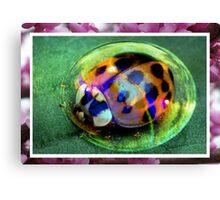 Bubble Beetle Canvas Print