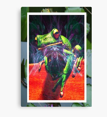Bug Catcher Canvas Print